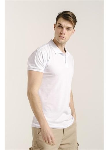 Oksit Alcott Polo Yaka Slim Fit Erkek Tshirt Beyaz
